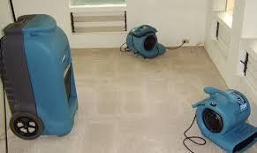 Water Damage Restoration in Indianapolis, IN (1)